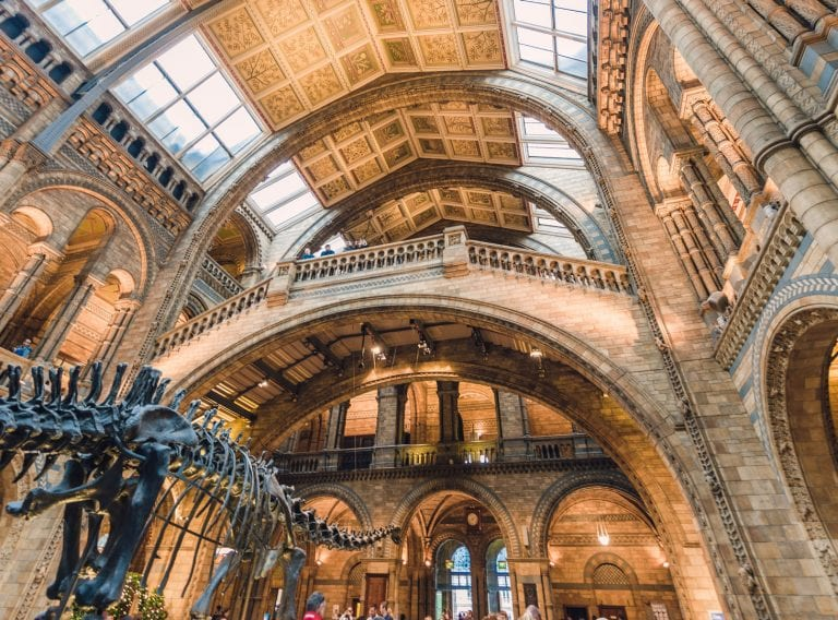 laser scan survey of Natural History Museum, London
